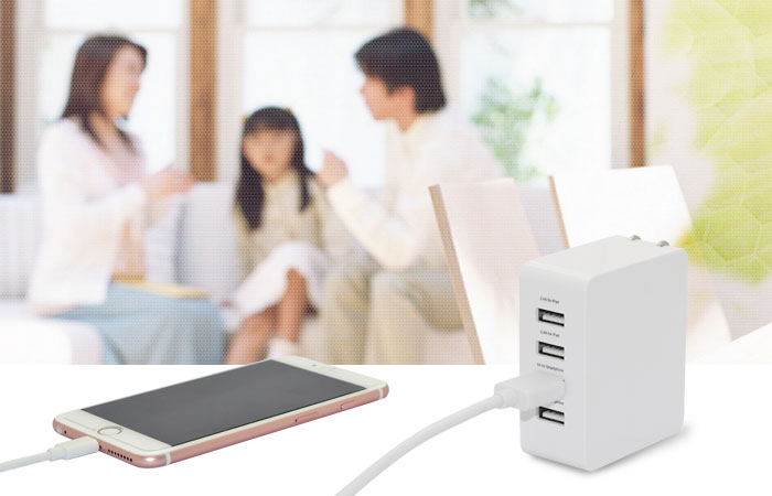 travel charger tr098